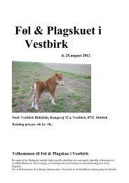 Føl & Plagskuet i Vestbirk - Shetlandspony