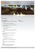 Jul og nytår i Thailand - MarcoPolo - Page 5