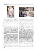 Minatos magnetmotor - DIFØT - Page 4