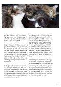 KATTENS ADFÆRD - Dyrenes Beskyttelse - Page 3