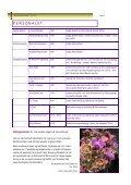 årsmelding 2011 - BLOK - Page 3