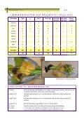 årsmelding 2011 - BLOK - Page 6