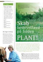 hestevelfærd på folden - Hestemagasinet.dk