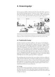4. Græsningsdyr