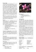 2008 - Inerisaavik - Page 2