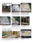 Fra gammelt skur til lækker garage Fra gammelt skur til lækker garage - Page 3