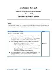 Udkast til Handlingsplan for Rideskoleudvalget d. 12. januar 2012