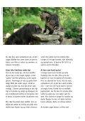 SÅDAN PASSER DU DIN KAT - Dyrenes Beskyttelse - Page 5