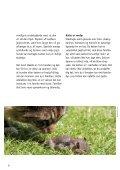 SÅDAN PASSER DU DIN KAT - Dyrenes Beskyttelse - Page 6