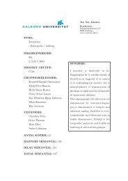 4. semester rapport
