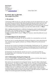 Redegørelse af civ.ing Erik Somer