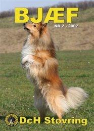 Midtjysk Hundecenter - DcH Støvring