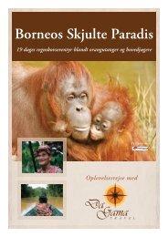 Borneos Skjulte Paradis - DaGama Travel