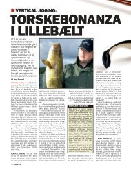 Read article (pdf - 627 KB) - Jens Bursell