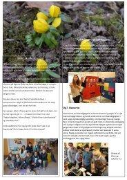 Marts 2013 - Nærum Skoles hjemmeside