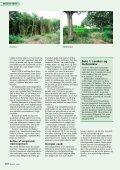 Drift af stævningsskove - Profil, Julia Gram-Jensen - Page 3