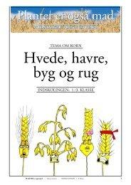 Korn/Hvede, havre, byg og rug (lærer+elev+opgaver)