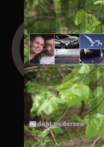 DP Profilbrochure - Kontekst