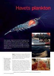 Havets plankton - Aktuel Naturvidenskab