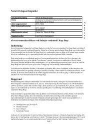 Indledende vurdering af oversvømmelsesrisikoen fra havet