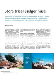 Store træer sælger huse