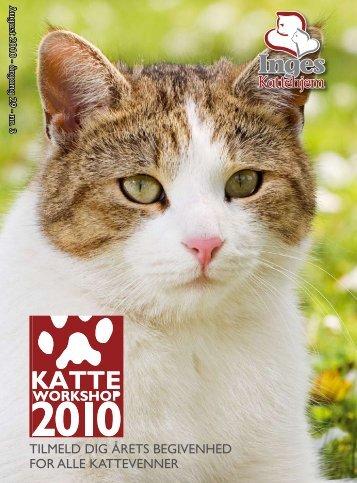 Tilmeld dig åreTs begivenhed for alle kaTTevenner - Inges Kattehjem