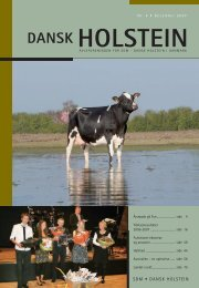 SDM - Dansk Holstein
