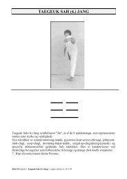 T4 Taegeuk Sah Jang - Chung Un