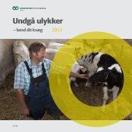 Undgå ulykker - LandbrugsInfo