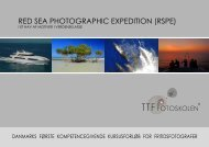 RED SEA PhOTOGRAPhIC ExPEDITION (RSPE) - Tybjerg Tekst ...