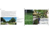 Inspirationsfolder om Lokal Afledning af Regnvand - Anne Stausholm