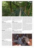 den store borneo rundrejse & singapore - Jesper Hannibal - Page 3