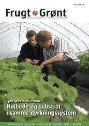 Højbede og substrat i samme dyrkningssystem - Gartneribladene