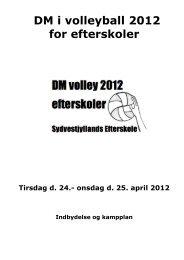 DM i volleyball 2012 for efterskoler - Sydvestjyllands Efterskole
