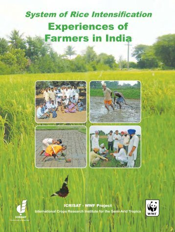 Experiences of Farmers in India Experiences of Farmers in ... - AgSri