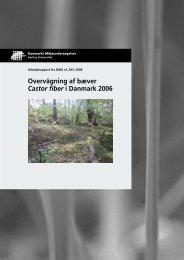 Overvågning af bæver Castor fiber i Danmark 2006