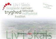Skals pdf - Viborg Kommune