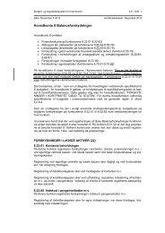 4.8 Balanceforskydninger - Budget- og regnskabssystemerne