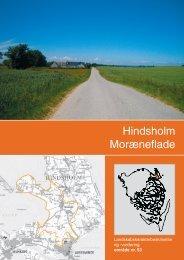 Landskabsanalyse Hindsholm Randmoræne med halvøen Skoven