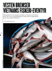 Vesten bremser Vietnams fiskeri-eventyr - Dansk Vietnamesisk ...
