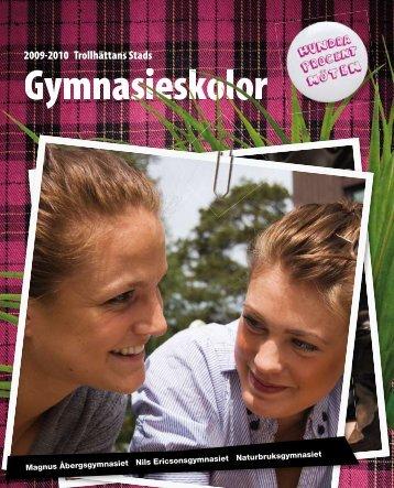 Gymnasieskolor - Magnus Åbergsgymnasiet