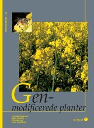 Genmodificerede planter