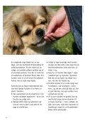 HVIS HUNDEN ER AGGRESSIV - Dyrenes Beskyttelse - Page 4