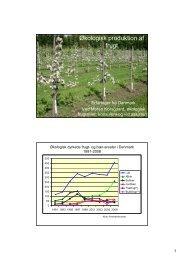Økologisk produktion af frugt - Hagis
