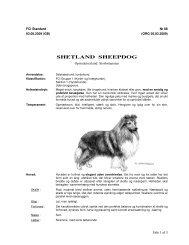 DKK's standard kan downloades her som pdf - Dansk Shetland ...
