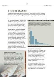 Kapitel 7 - Fiskebestande (pdf - 190 Kb) - Fiskericirklen