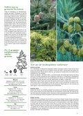 Miniature nåletræer - Webkommunikator - Page 3