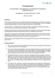 tilsynsrapport fra uanmeldt tilsyn i specialgruppen i fritidscentret ...