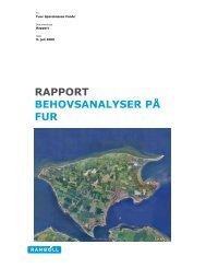 RAPPORT BEHOVSANALYSER PÅ FUR - FurNyt.dk