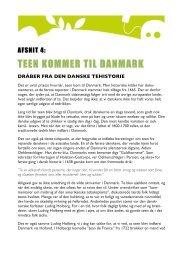 Historie - Teen kommer til Danmark - teinfo